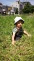 ゆうた草原