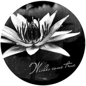 f:id:wishes-come-true:20180918105516p:plain