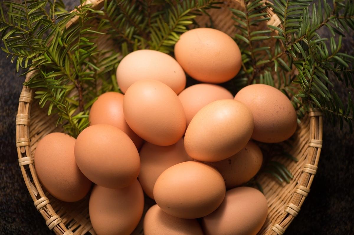 籠の中の卵