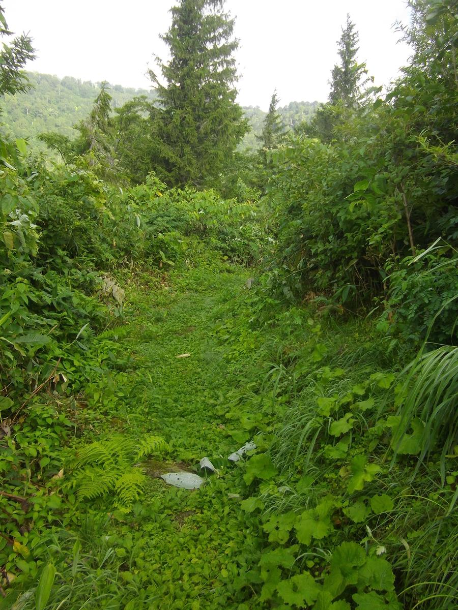 f:id:wistorian:20110101002143j:plain