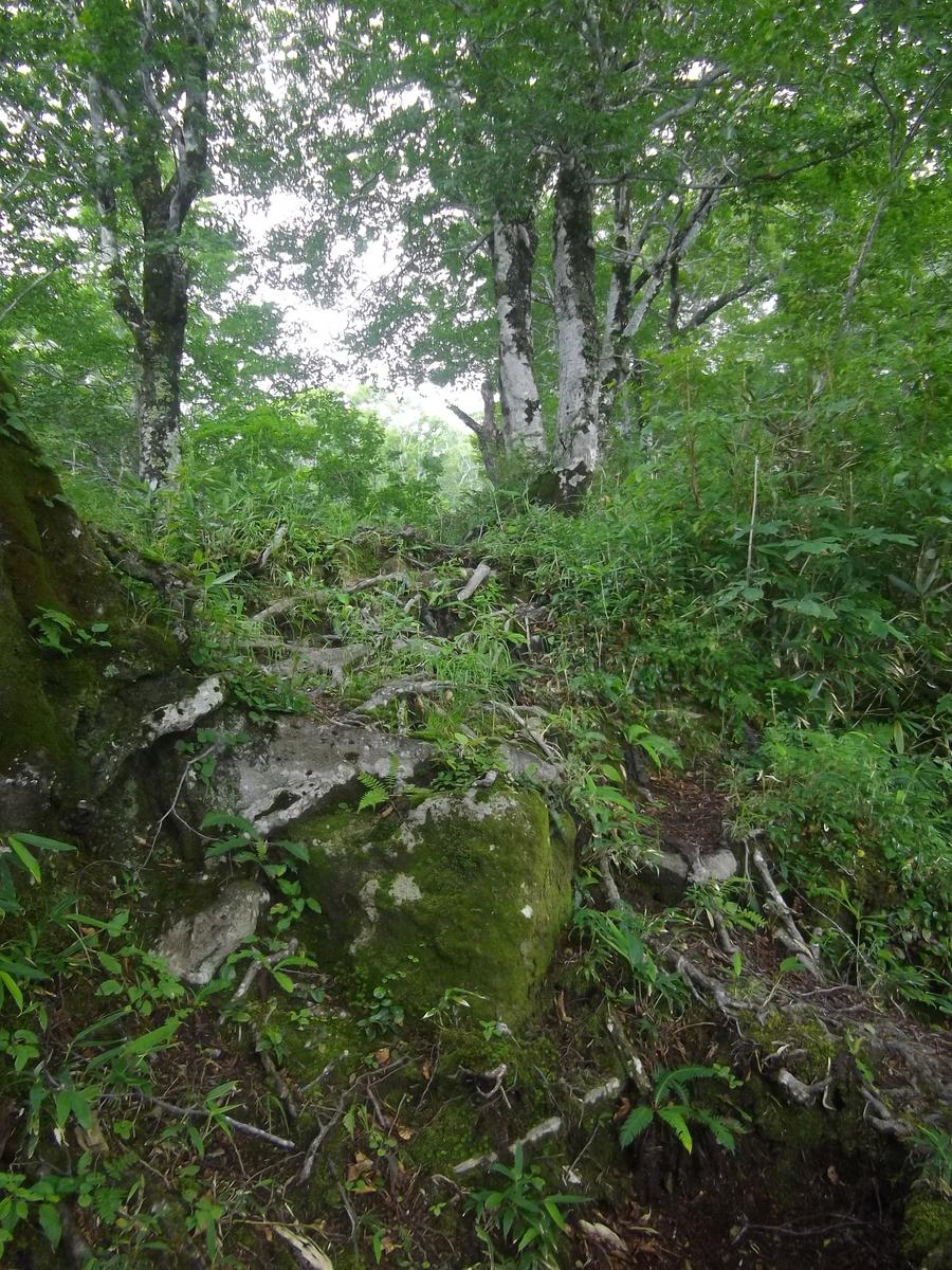 f:id:wistorian:20110101011330j:plain