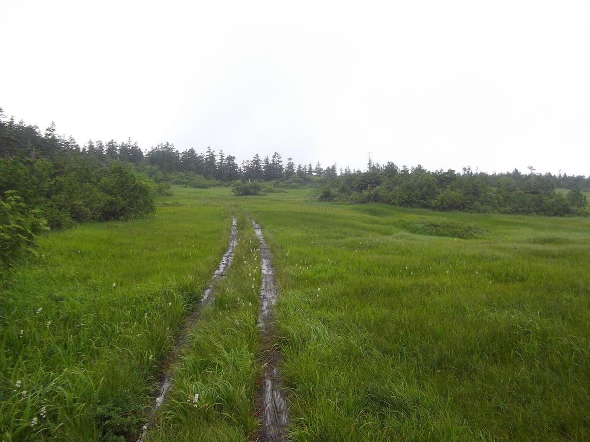 f:id:wistorian:20110101024528j:plain