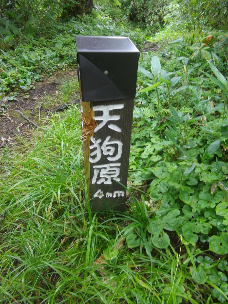 f:id:wistorian:20110101025658j:plain
