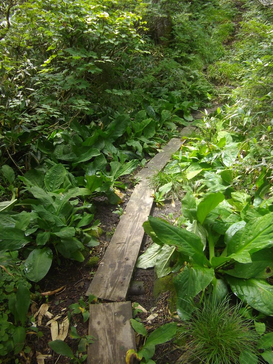 f:id:wistorian:20110101034452j:plain