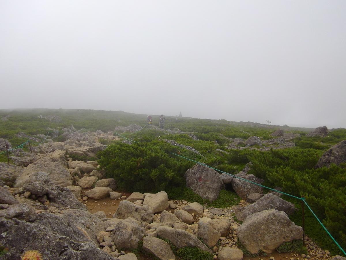 f:id:wistorian:20110101061539j:plain