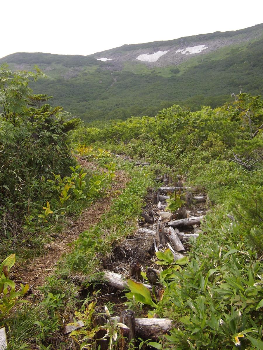 f:id:wistorian:20110102051312j:plain