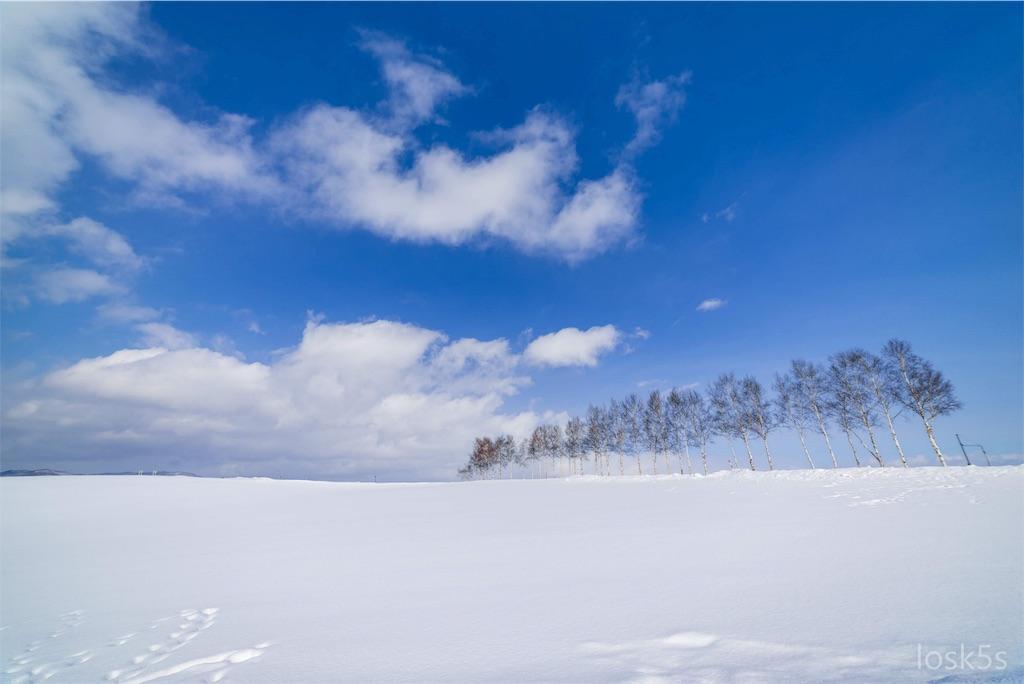 北海道 冬の美瑛町