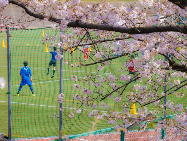 f:id:withfootball:20200320200958j:plain