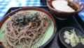 [4/30]4/30 昼 冷し山菜とろろそば@高尾山やまびこ茶屋