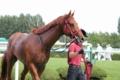 レッドアーヴィング_20110911
