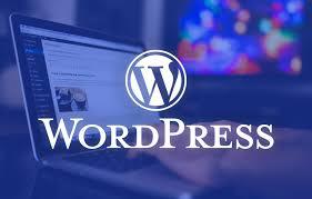 f:id:wordpressseomaster:20201015235440j:plain