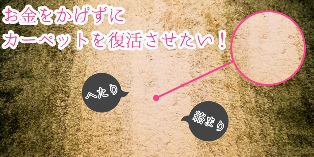 【へたる・絡まる】カーペットがペット用ブラシで復活!