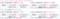 表と段落のアキ_04