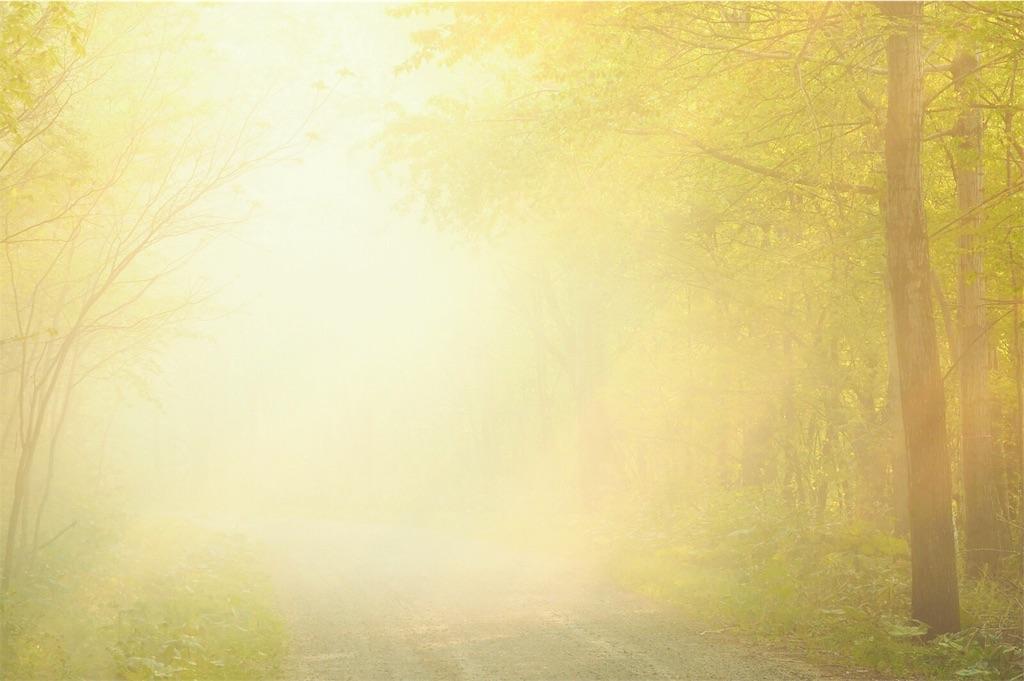 朝日の画像