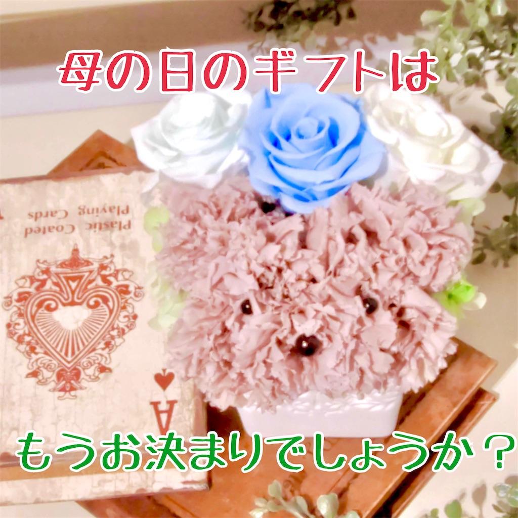 f:id:worldshop_09:20210505131947j:image