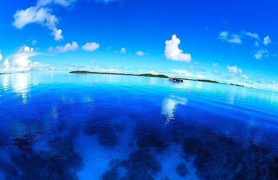 「パラオの海」の画像検索結果