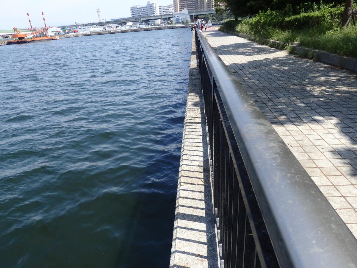 堤防際の写真