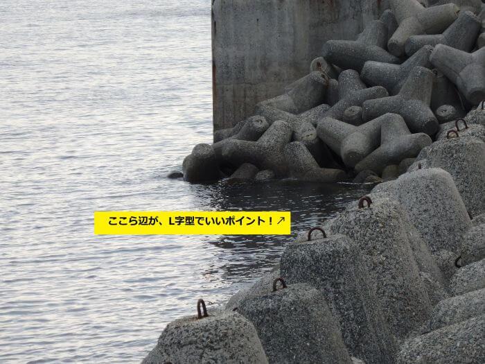 カサゴがよく釣れるL字型に並べられたテトラポットの写真