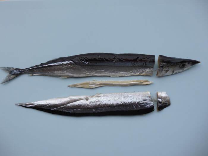 カサゴ釣りのエサにするサンマの干物を切り分けている写真