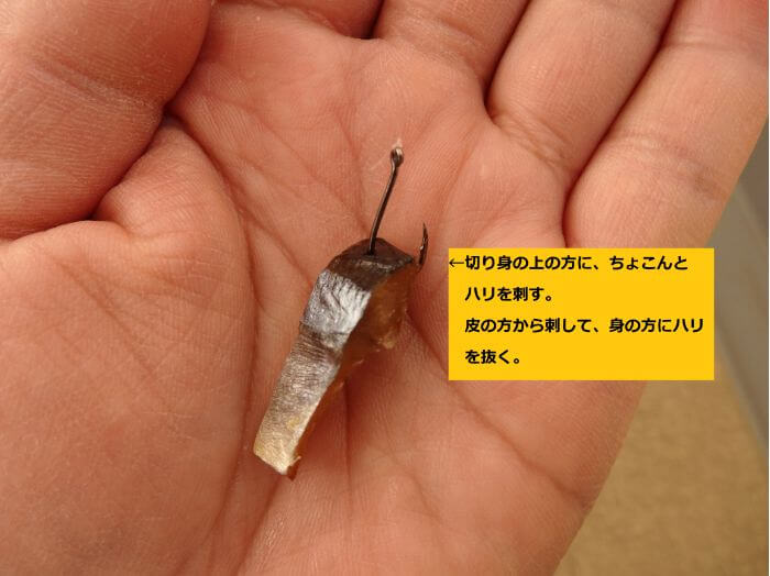 アナゴ釣りで使うサンマの切り身にハリをちょん掛けした写真