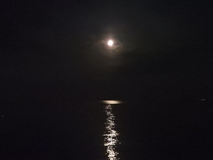 メバルが釣れる夜の海の写真