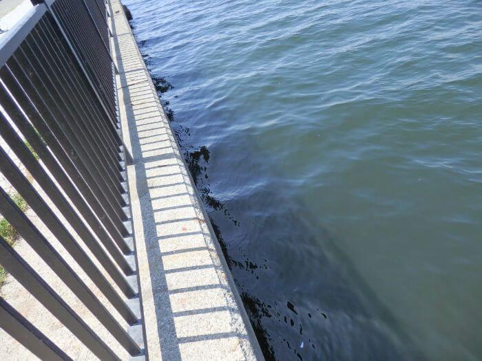 アブシンが釣れる堤防の際の写真