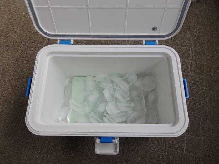 ロゴス氷点下パック1個と角型氷500gがクーラーボックスに入っている写真