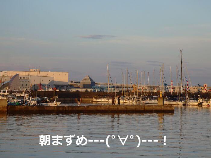 魚がよく釣れる朝まづめの漁港の写真