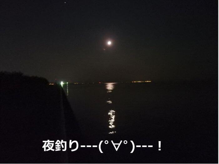 カサゴがよく釣れる夜の海の写真