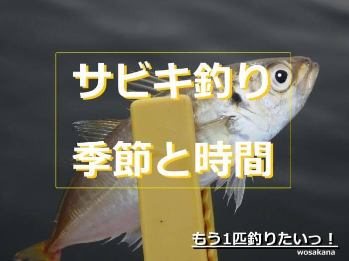 サビキ釣りで釣れたアジの写真