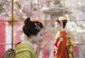京都新聞写真コンテスト 梅香ほのか・おもてなし