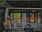 京都新聞写真コンテスト 光とあそぶ