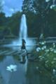 京都新聞写真コンテスト Alice in wonderland