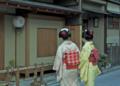 京都新聞写真コンテスト 初春