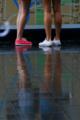 京都新聞写真コンテスト 雨の観光者