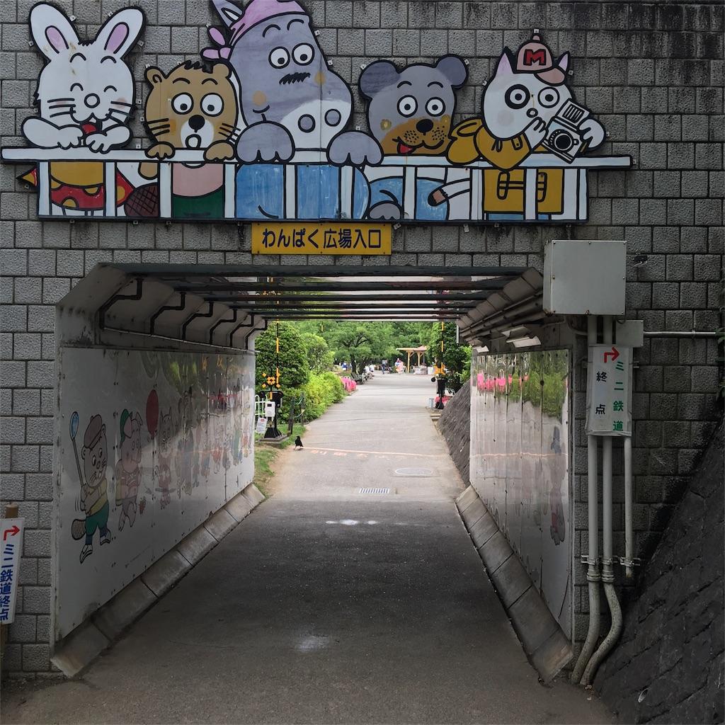f:id:wpeisuke:20170610232312j:image