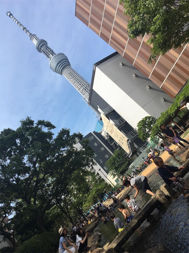 f:id:wpeisuke:20170628083331j:image