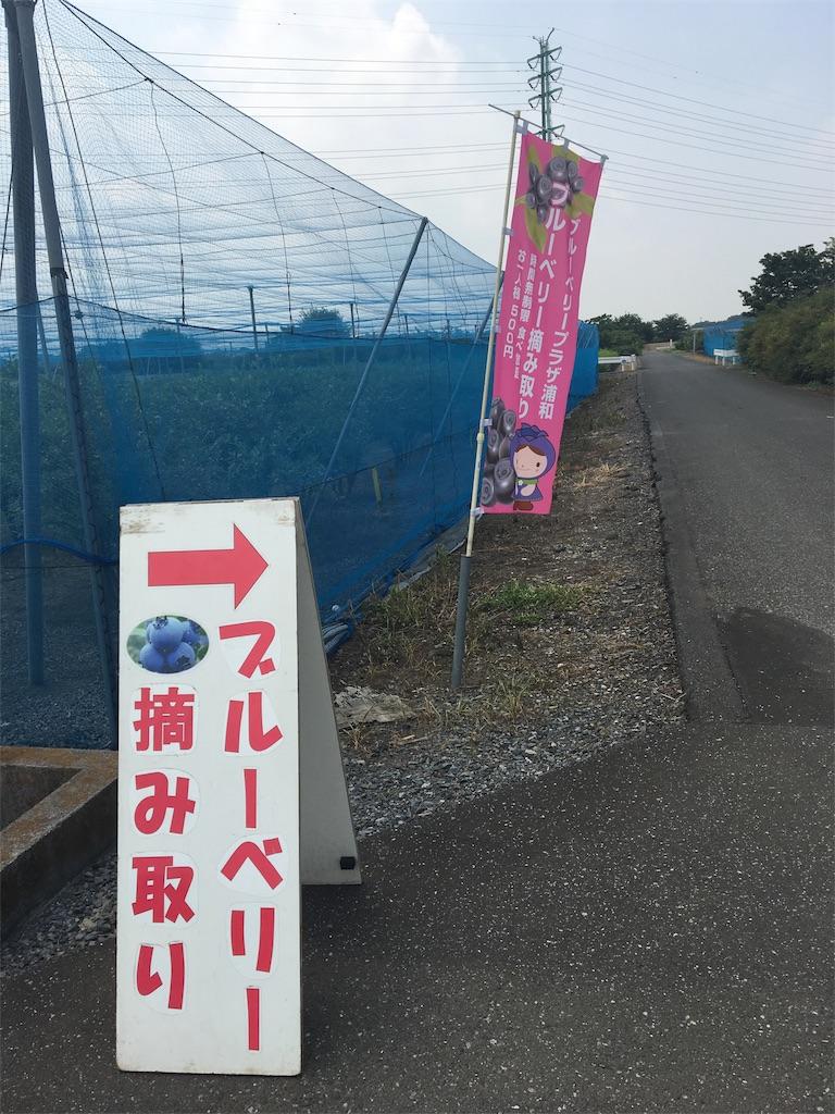 f:id:wpeisuke:20170724162627j:plain