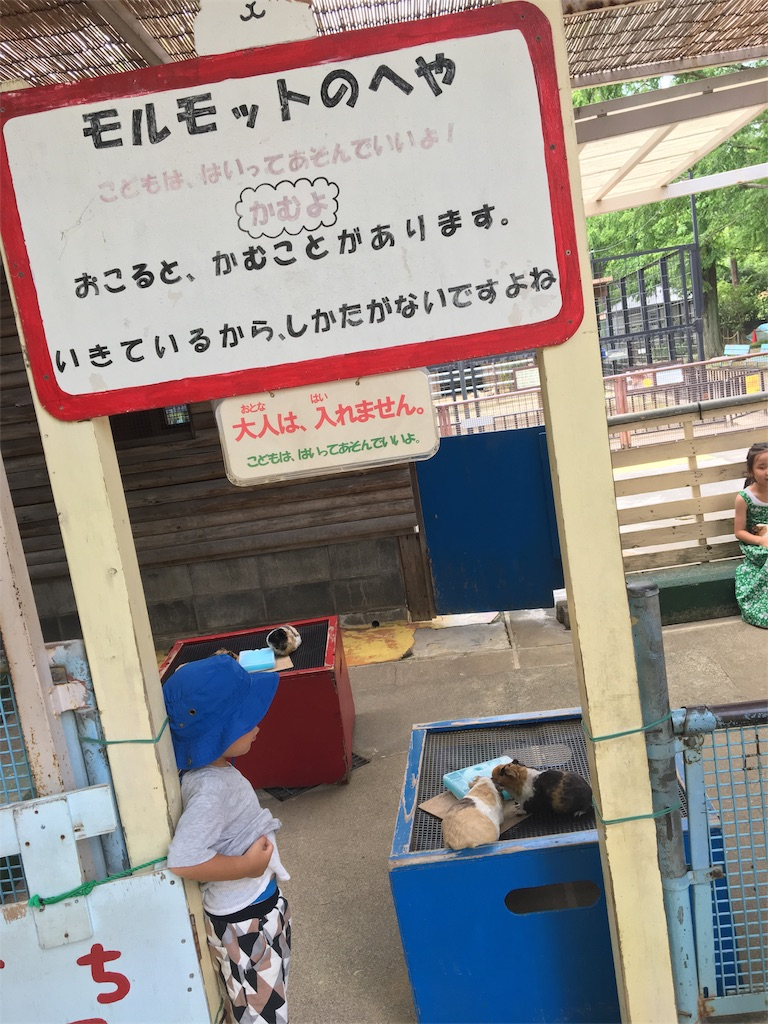 f:id:wpeisuke:20170724164515j:plain