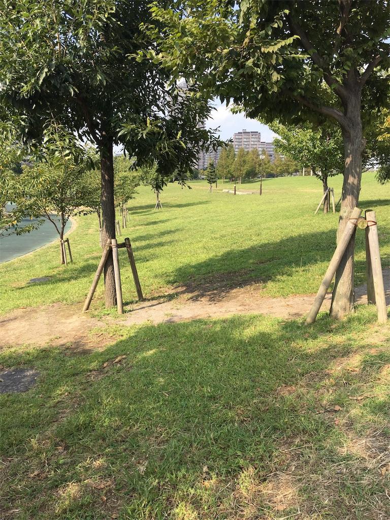 f:id:wpeisuke:20171011215155j:plain