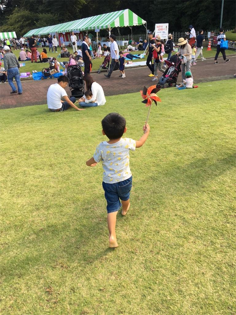 f:id:wpeisuke:20171011222130j:plain
