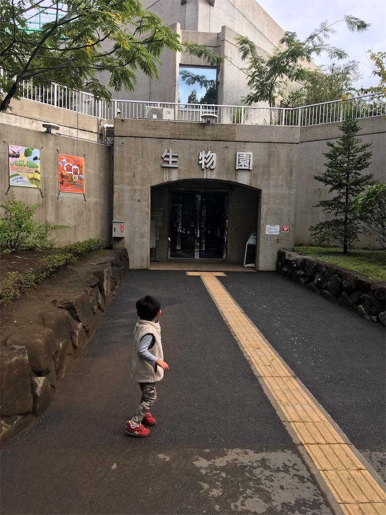 f:id:wpeisuke:20171226140743j:plain