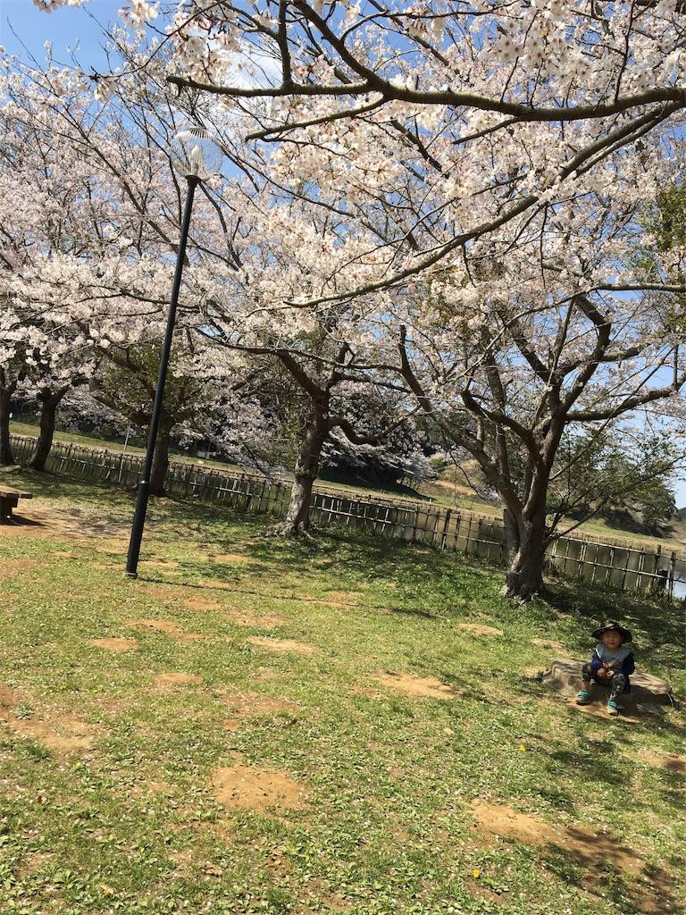 f:id:wpeisuke:20180405061902j:plain
