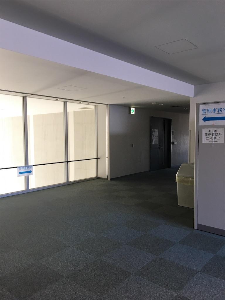 f:id:wpeisuke:20190204225232j:plain