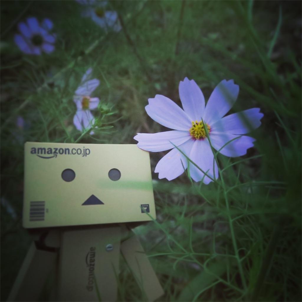 f:id:writertakuma:20161121204640j:image
