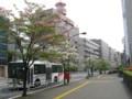 長野市のハナミズキ