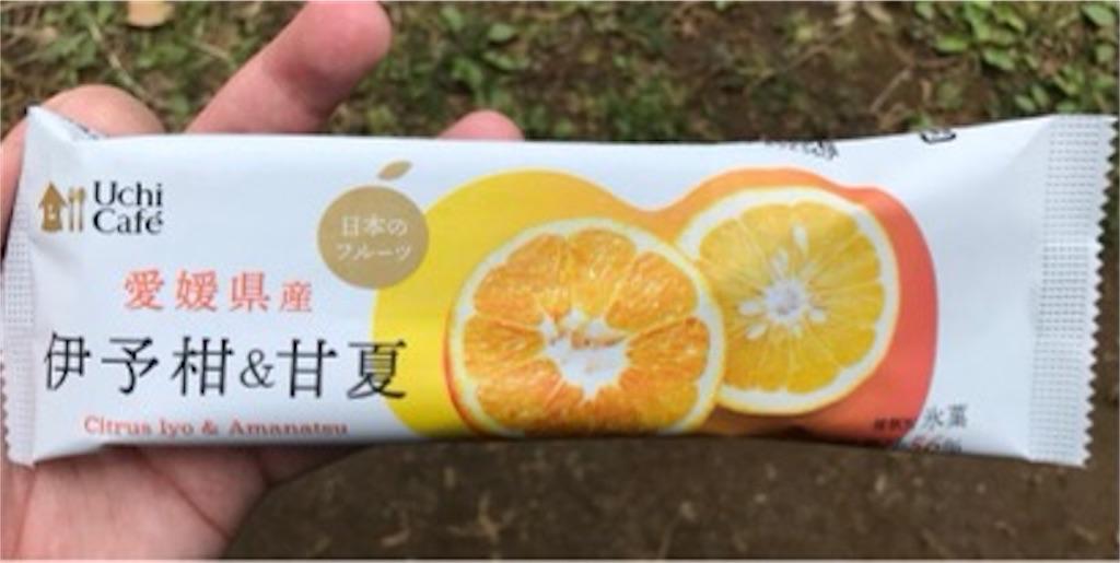 ローソン ウチカフェ 日本のフルーツ 伊予柑&甘夏