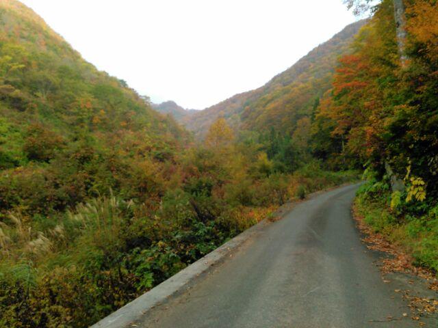 f:id:xalakawa:20161115135018j:plain
