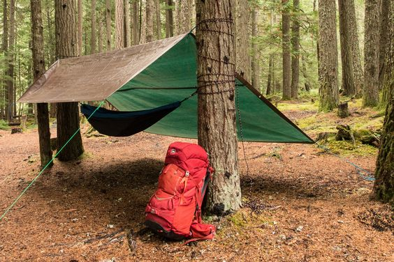 https://www.rei.com/blog/camp/tarp-tips-quick-shelter-for-rain-wind-or-saving-weight?cm_mmc=sm_pin_blog&crlt.pid=camp.o6vqZW46x6cV