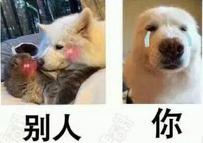 f:id:xiangnai:20180704215437j:plain